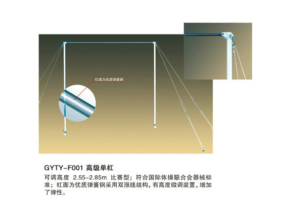 GYTY-F001高级单杠