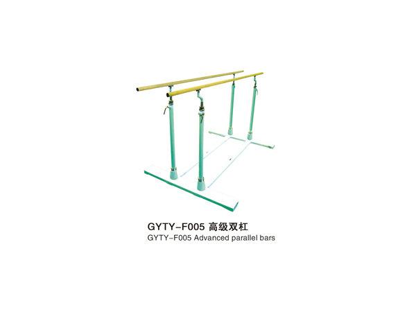 GYTY-F005高级双杠