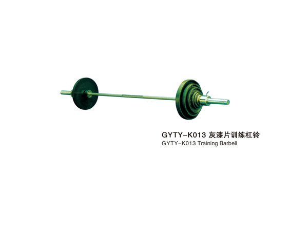 GYTY-K013灰漆片训练杠铃
