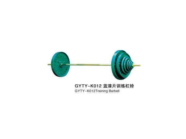 GYTY-K012蓝漆片训练杠铃