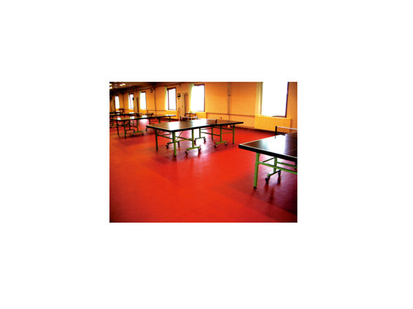 乒乓球运动地板1